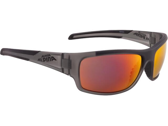 Alpina Testido Cykelbriller grå/gennemsigtig